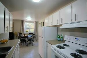 Convenient! Bright Renovated Suites-Spacious Kitchens-Pool! Cambridge Kitchener Area image 1