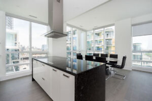 Luxurious 2 bedroom in *Downtown Core*