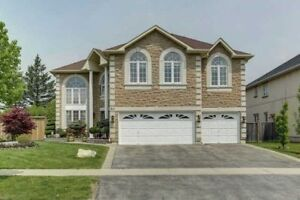 House for Rent - 4 Bedrooms - North York, Markham, Richmond Hill
