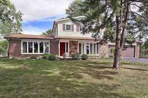 For Rent 3 Bd Beautiful House In Sharon(East Gwillimbury)