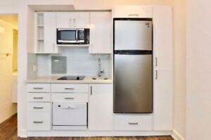 Newly Renovated Micro-Smart Bachelor Suite W/ 5 Apls-From $1465!