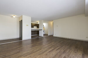 1 BR for rent from 1 Nov or immediately. No security deposit