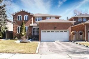 Beautifully Renovated 4 Bedroom Home in Richmond Hill!!!!