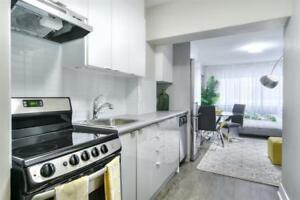 1 month FREE! Large Bachelor downtown - Concordia