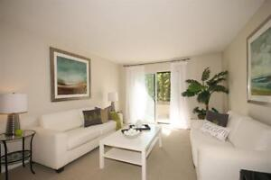 Downtown AND Surrounded by Nature! Spacious-Upgraded!