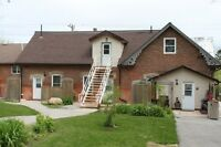 Spacious 1 Bdrm Home For Rent In Desirable Bradford Area !  $700