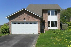 Beautiful basement apartment for rent in Whitby