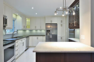 Holiday Special Free Sink! Quartz Countertops, Granite & Marble