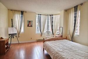 Beautiful Fully Furnished 2-Bedroom Condo for Rent in Downtown