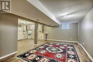 Clean basement apartment for rent
