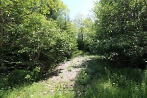 I'M HERE & READY FOR YOUR COTTAGE!!! 2.41 ACRE LOT, LAKE ACCESS