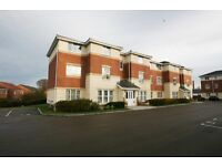 2 bedroom flat in Broadmeadows Close, Swalwell, Newcastle Upon Tyne, NE16