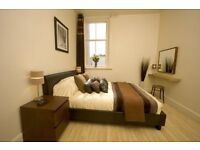 One bed roomed fully furnished apartment