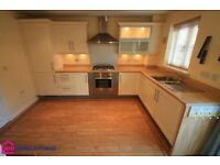 3 bedroom house in Water Avens Way, Ingleby Barwick, TS18