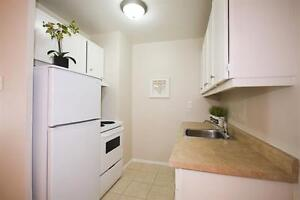 Downtown AND Surrounded by Nature! Spacious-Upgraded! London Ontario image 3