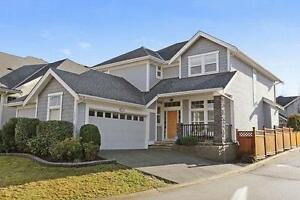 Gorgeous, bright 6 BR & Office Family Home @ Sullivan Station