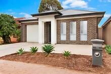 New House - Walk to Paradise Interchange - Dernancourt, SA 5075 Dernancourt Tea Tree Gully Area Preview