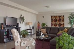 11-081 Executive furnished suite on 3rd floor, short term