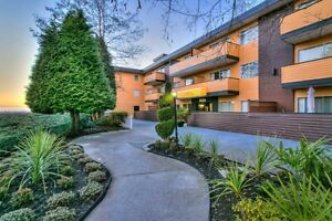 Bachelor available at 1021 Fourth Avenue, New Westminster