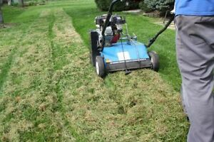 Aerate and or Dethatch services for your lawn Kitchener / Waterloo Kitchener Area image 2
