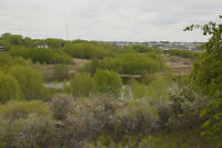 Bearspaw Valley, On city limits, 2 acre parcel ready to build on