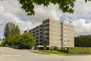 Jr. 1 Bdrm available at 544 Sydney Avenue, Coquitlam