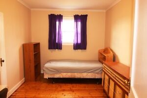 Room for rent in quiet house, newly renovated and 1 km from mun St. John's Newfoundland image 2