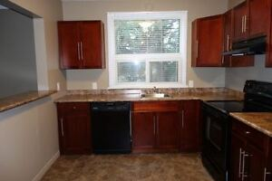 Beautifully Renovated 2 Bedroom w/In Suite Laundry