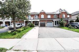 Must See! Backing On To Open Space, Great Layout W/ 3 Bedrooms
