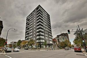 Large Plateau Condo by park La Fontaine