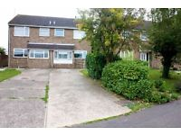 5 Bedroom Property To Let - SPEEDY1125