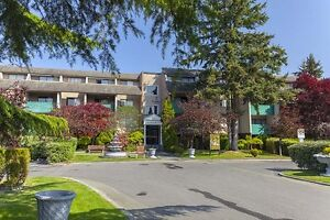 1 Bdrm available at 10951 Mortfield Road, Richmond