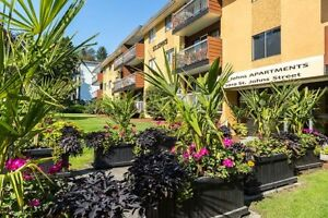 1 Bdrm available at 2010 St. Johns Street, Port Moody