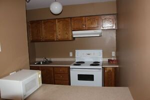 Affordable 2 Bedroom Condo- Vendor will pay 1st Years Condo Fees St. John's Newfoundland image 3