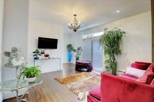 luxury furnished very large 2 floor - 2 bedroom 5m from downtown