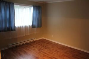 2 Bedroom Apartment available now : ) St. John's Newfoundland image 3