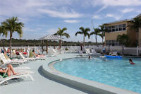 Beach Condo (Indian Shores FL - Tampa Area) $499