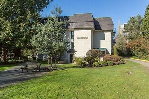 1 Bdrm available at 3836 Carrigan Court, Burnaby