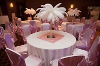 Assorted Wedding Decor - Ostrich Feathers, Vases, Chair Covers