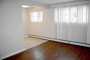 *FREE RENT* Bachelor w/ Laminate~ Walk to River Valley & LRT!