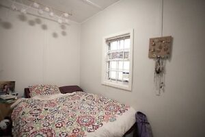 Cozy room close to Wharf, Corso, bus strops and beaches Manly Manly Area Preview