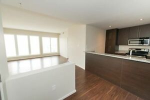 Stoneridge Tower 2 bedroom/2 bathrooms Luxury apartment