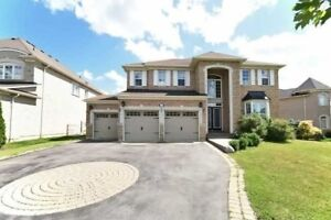 Well Located Beautiful 3 Garage Detached Home!!
