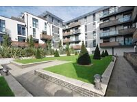 Superb One Bed Modern Apartment with Great Private Terrace