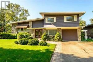 8 BRIAN AVE St. Catharines, Ontario