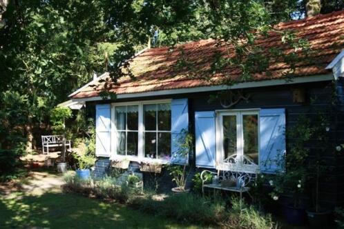 Knus vakantiehuisje in beerze nabij ommen en hardenberg for Vakantiehuisje bos