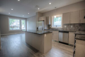 City park/Downtown new 2 story 3 bedroom house