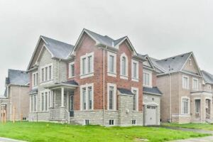 Like New 4 Bedroom Luxury Detached Home in Newmarket