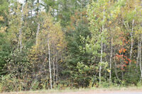 25,000sqft Building Lot just minutes from the Town of Amherst