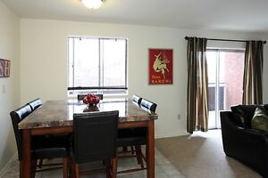 JULY OR AUGUST RENOVATED ONE BEDROOM SUITES London Ontario image 5